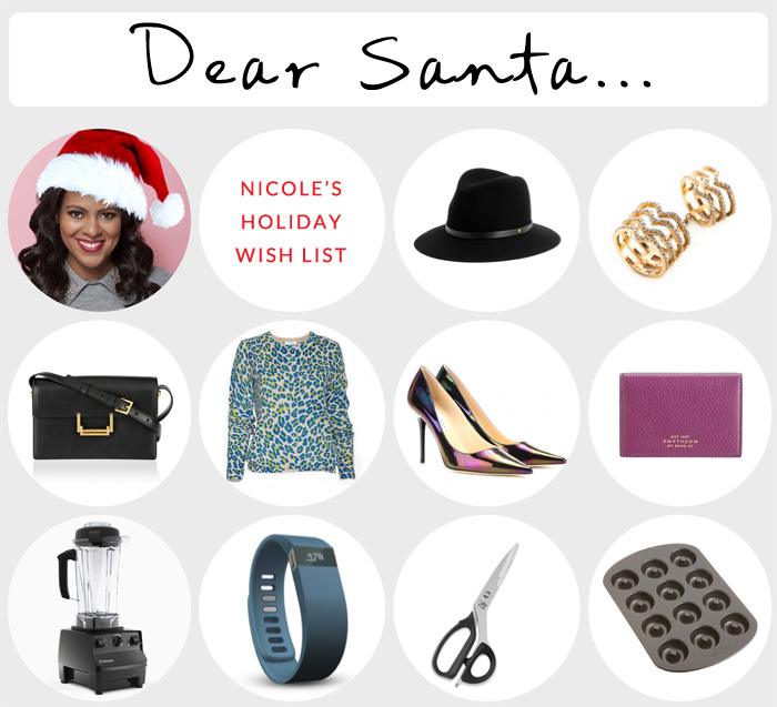 Nicoles Holiday Wishlist