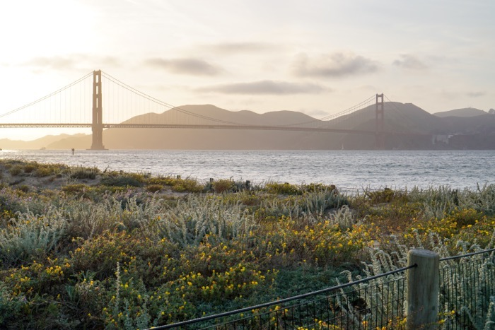 48 Hours in San Francisco 12