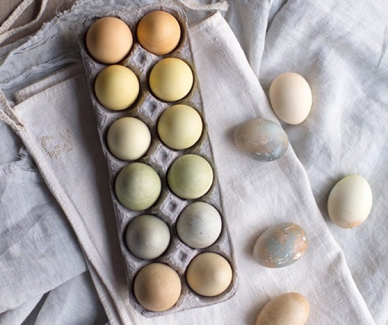 Naturally Dyed Easter Eggs_13